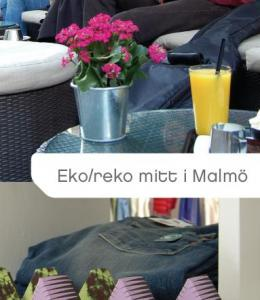 ekoreko_bild.JPG