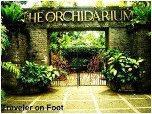 orchidarium-rizal-park.jpg